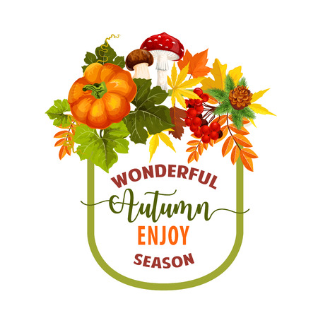 Autumn season poster or greeting card design of foliage, pumpkin harvest and rowan berry with maple leaf and oak acorn. Vector autumn amanita or chanterelle mushroom, pine or fire tree cones