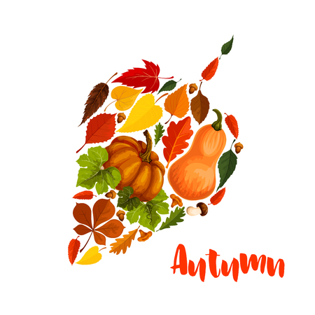 amanita: Autumn vector pumpkin leaf foliage greeting poster Illustration