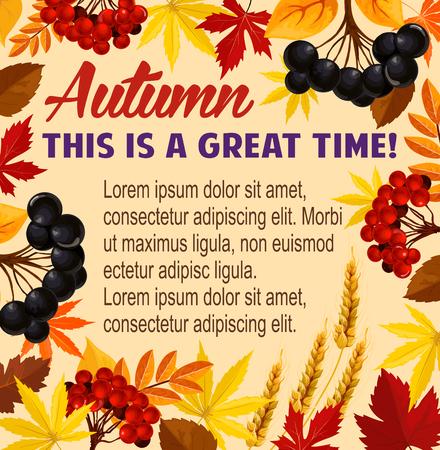 Autumn vector poster acorn leaf, rowan berry Ilustração