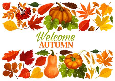秋葉、カボチャの境界線と秋のバナー
