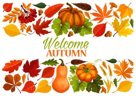 Autumn banner with border of fall leaf, pumpkin Ilustrace
