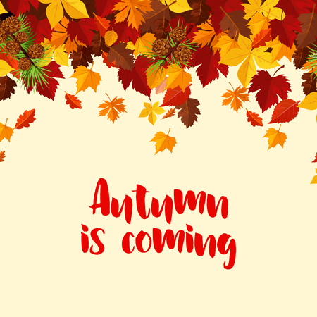Autumn is coming poster template of foliage and fall leaves for seasonal greeting card or autumn sale design. Vector falling maple leaf, oak acorn or rowan and birch, fir and pine tree cones