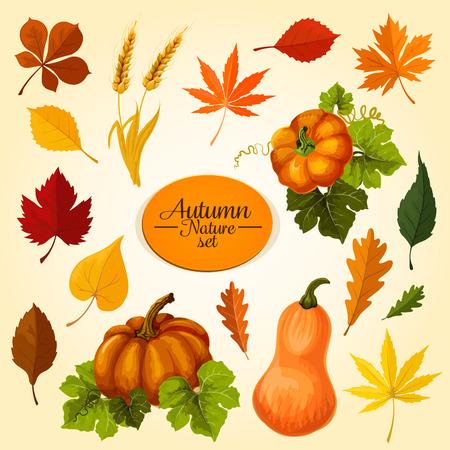 秋野菜と落ちた葉のアイコンを設定します。秋収穫のカボチャの野菜、メープル、オーク、栗の葉、小麦の耳、バーチのオレンジと赤の葉、秋の自