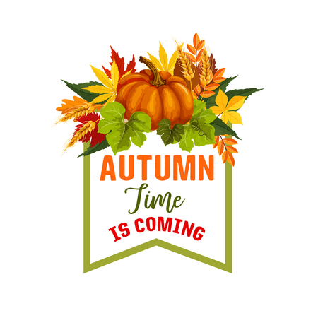 Autumn time maple leaf or pumpkin vector poster