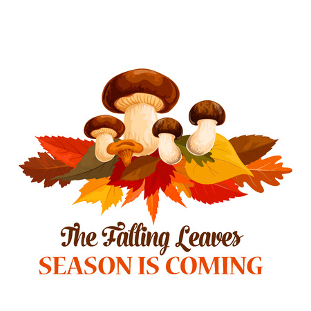 Autumn mushroom maple leaf vector greeting poster