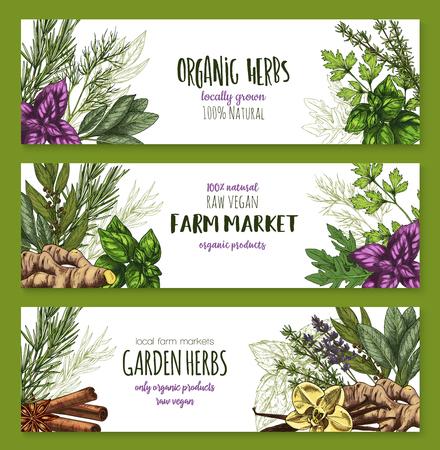 Organische kruiden en specerijen boerderij banner set Stock Illustratie