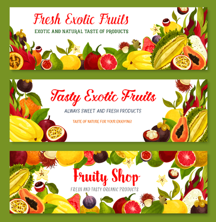 Exotic tropical fruit frame and border banner set