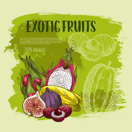 エキゾチックなトロピカル フルーツは、グランジ ポスター デザインをスケッチします。