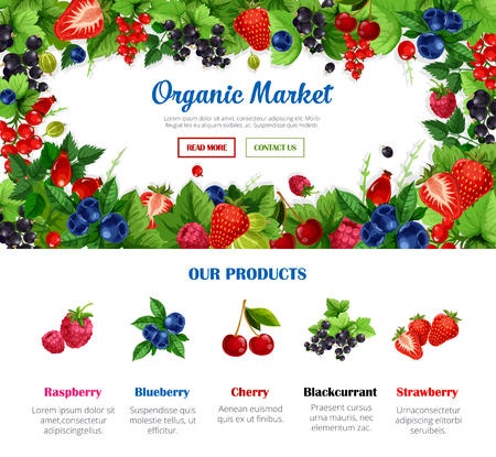 Fruit and berry frame for organic food market poster template. Strawberry, cherry, blueberry, raspberry, black and red currant, gooseberry and briar branches with green leaf for web banner design