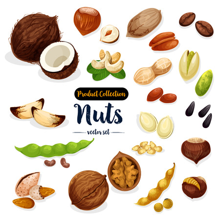Nuts, seed, bean cartoon icon set for food design Çizim