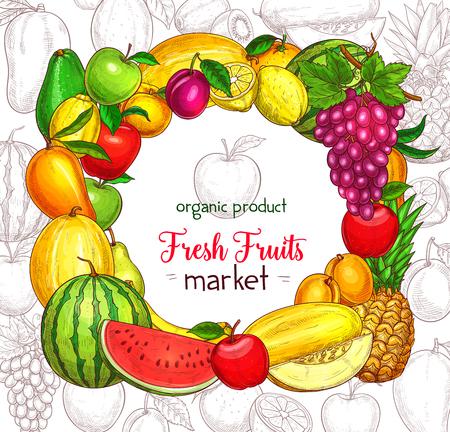 Fruit frame border for food market poster. Apple, lemon, orange, banana and pear, mango, grape and pineapple, peach, watermelon, plum and melon, avocado, kiwi and apricot sketches Ilustração