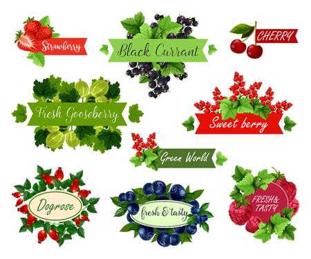 Berry and fruit label set for food, drink design