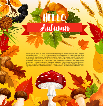 Autumn acorn leaf, pumpkin vector greeting poster