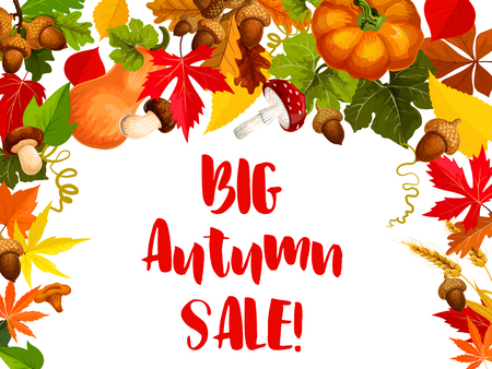 Autumn season sale offer poster for retail design