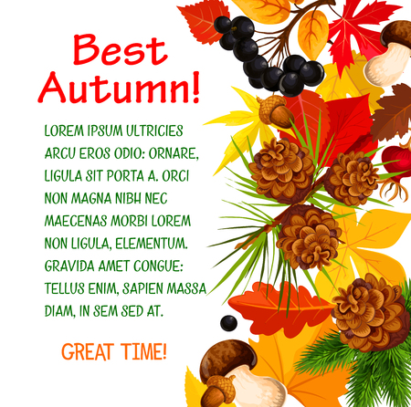 Autumn poster template of fall forest nature Imagens - 84775436