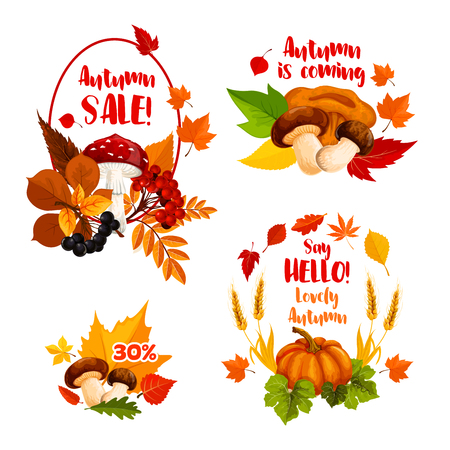 Autumn Sale, Hello Fall icons for seasonal shopping discount promo or greeting card design.