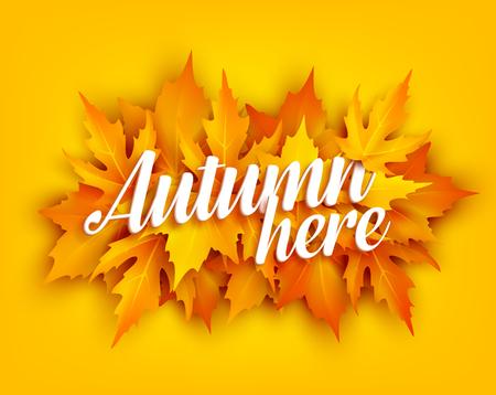 Affiche de feuille d'automne avec feuillage d'érable jaune Banque d'images - 84775442