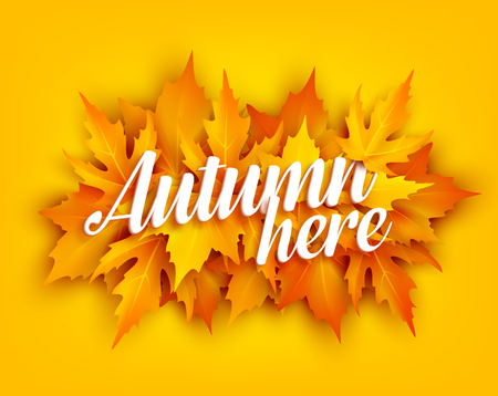 Autumn leaf poster with yellow maple foliage