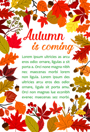 Autumn fallen leaf poster with fall nature frame Vettoriali