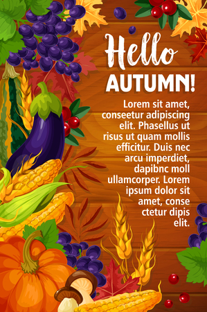 Hello Autumn greeting poster or card of seasonal fall harvest.