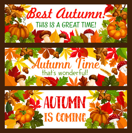 Thanksgiving banner set of autumn harvest holiday