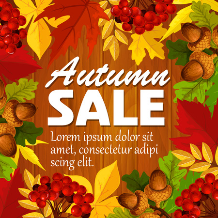 Autumn vector sale poster leaf, rowan berry acorn 向量圖像