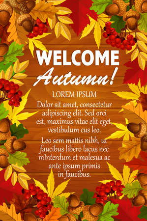 Welcome Autumn poster template of seasonal foliage fall. Imagens - 84712537