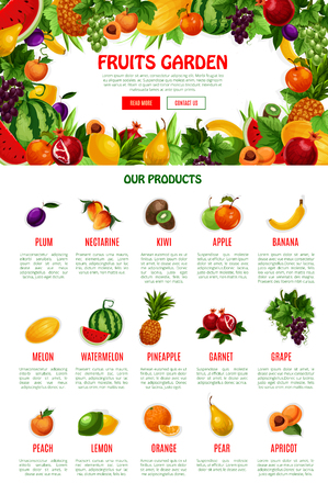 Poster template of fruit shop or market