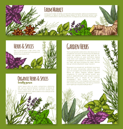 Templates for spice and herbs market