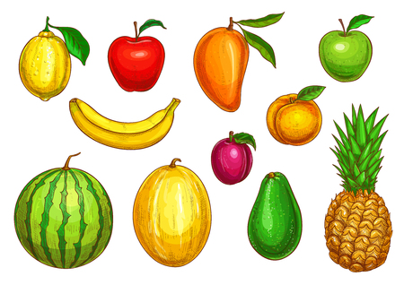 Fruits isolated icons set. Vector exotic pineapple, mango or papaya and farm garden apple, watermelon or melon and avocado, harvest of apricot or pear and lime or orange citrus fruit and plum Çizim