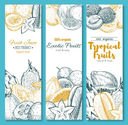 エキゾチックな熱帯の果物のスケッチ バナー  イラスト・ベクター素材