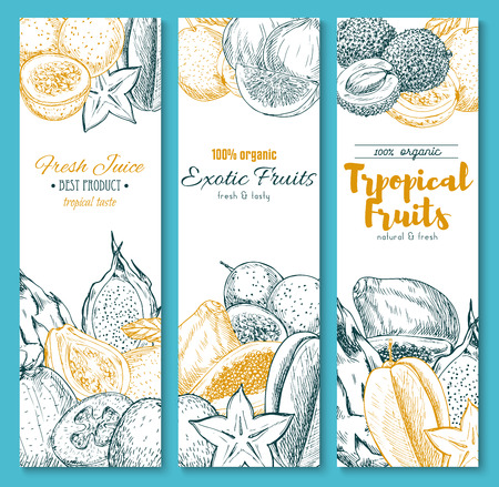 Sketch banners of exotic tropical fruits