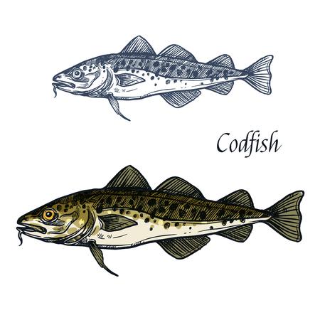 Kabeljauw vis vector geïsoleerde schets pictogram