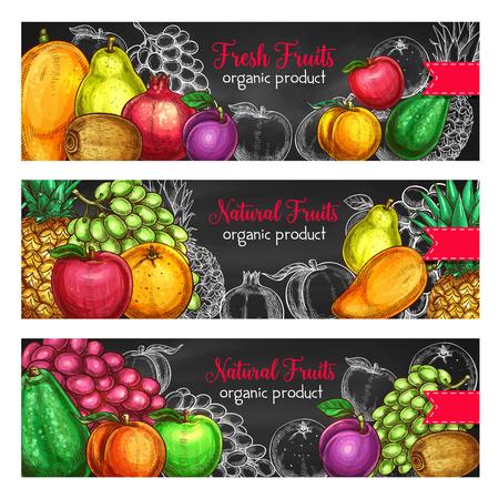 신선한 유기농 제품이나 과일 농장 시장을위한 과일 배너. 이국적인 파인애플, 망고 또는 파파야와 농장 정원의 벡터 집합 사과, 수박 또는 멜론 및 아 일러스트