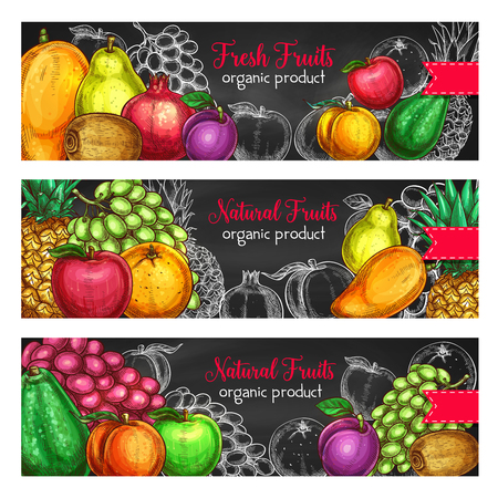 Fruits banners for fresh organic product or fruit farm market. Vector set of exotic pineapple, mango or papaya and farm garden apple, watermelon or melon and avocado, apricot or pear garden harvest