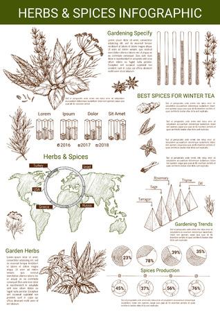 향신료와 허브 infographics 템플릿입니다. 벡터 디자인 요소 및 세계지도, 백 리 향, 오 레가 노 및 타 라 곤 백합 조미료에 다이어그램 조미료 및 정원 양 일러스트