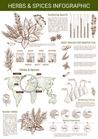 Spices and herbs infographics template. Vector design elements and diagrams on herbal seasonings on world map, thyme, oregano and tarragon percent share for condiment and garden spice production