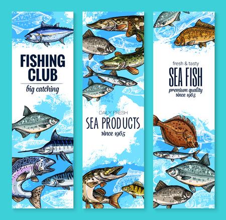 Banderas del club de la pesca de la captura fresca del pescador de los pescados. Vector conjunto de marlín de mar, platija o salmón y atún, productos pesqueros de mar trucha, navaga o arenque espadín y carpa, anguila o brema y burbot Foto de archivo - 84922983