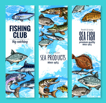 Fishing club banners of fresh fisherman fish catch. Vector set of sea marlin, flounder or salmon and tuna, fisher sea products trout, navaga or herring sprat and carp, eel or bream and burbot