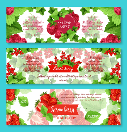 Berries banners for fruit or berry shop. Vector set of strawberry, raspberry or blueberry, forest cranberry or garden cherry and organic red currant and blackcurrant berries