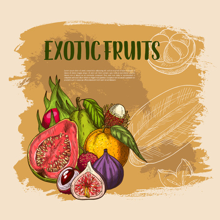 Vector exotic fresh tropical fruits poster