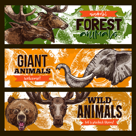 Wild animals vector zoo or save animal banners