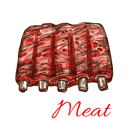 Pork or mutton fresh ribs vector meat sketch icon Ilustração