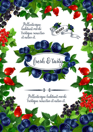 Vector poster of fresh berries and fruits Çizim