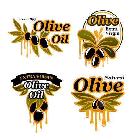 Olive oil vector icons set of olives