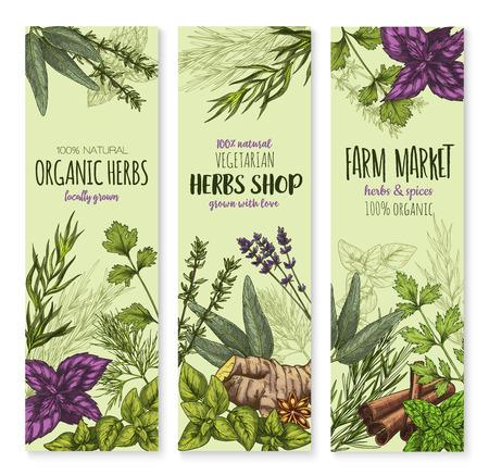 Specerijen en kruiden vector banners instellen Stock Illustratie