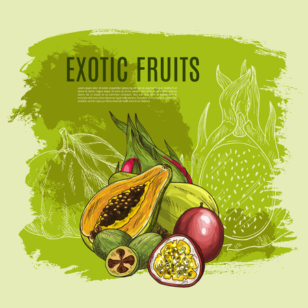 Exotic fruit sketch poster for food, drink design