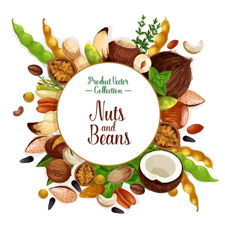 너트, 콩 및 종자 음식 포스터. 일러스트