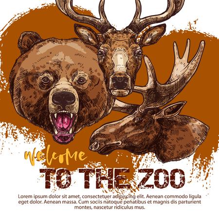 동물 스케치와 동물원 배너입니다. 활활 타오르는 곰, 사슴과 엘크 또는 무스의 동물원 광고 초대장, 전단지 또는 티켓 디자인을위한 야생 동물 포스터