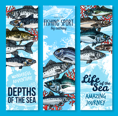 Sea fish and fishing sport club banners. Fresh seafood, salmon, tuna, perch, mackerel, dorado, sprat and navaga sketches. Saltwater ocean fish and marine animal poster for seafood restaurant design Illustration